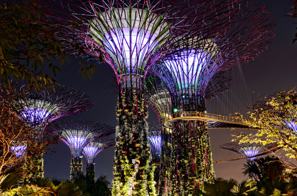 Singapore- Gardens by the Bay