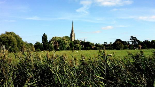 Visitare la Cattedrale di Salisbury