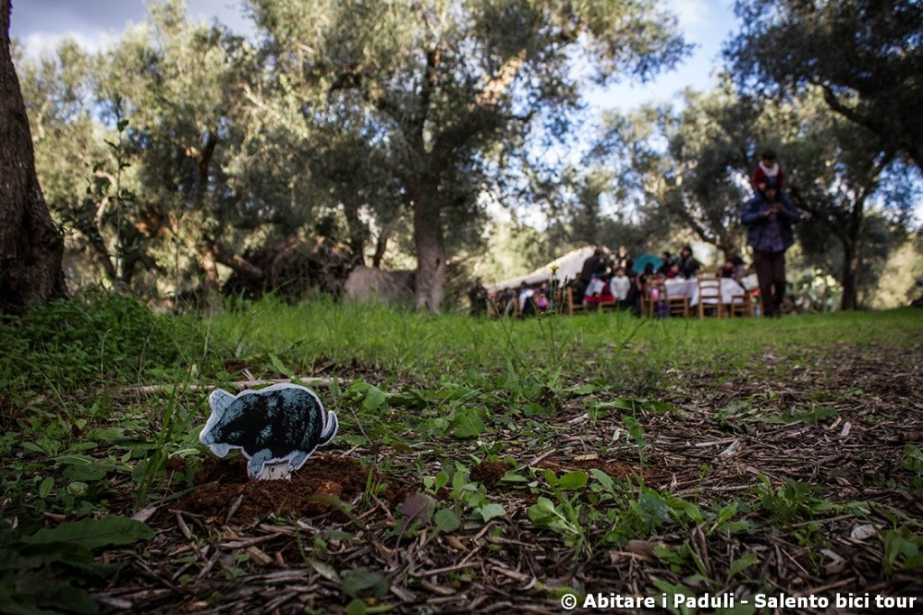 L'oliveto pubblico