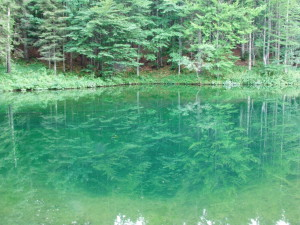 Lago degli Abeti, Riserva Orientata delle Agoraiedi sopra e Moggetto (Rezzoaglio, GE)