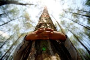 Le-mie-tre-idee-sul-Bioregionalismo-l-ecologia-profonda-e-la-consapevolezza-ecologica
