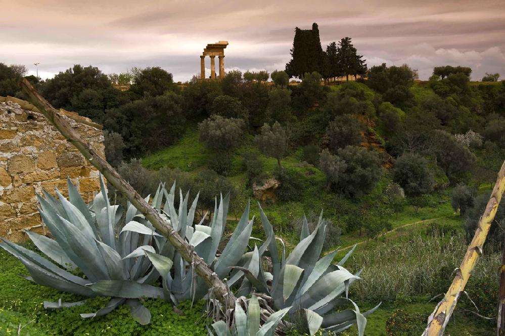 agrigento-valle-dei-templi-giardino-della-kolymbetra