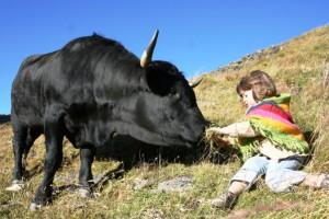 bimbi-e-mucca