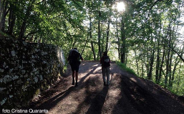 cammino_san_vicinio-foto_cristina_quaranta-1