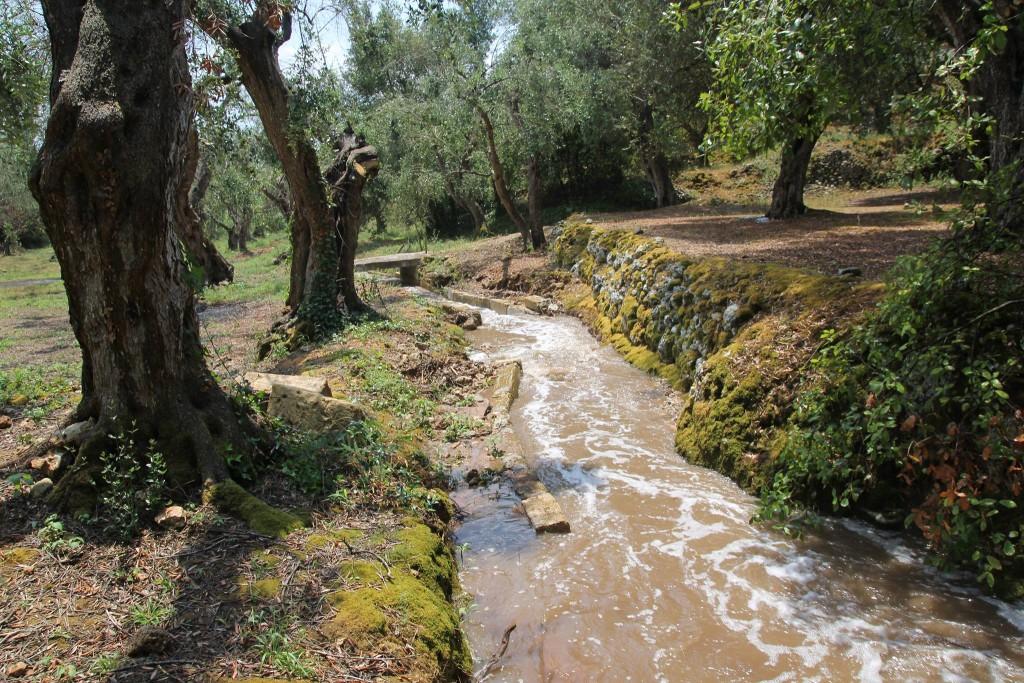 Canali_20 giugno 2015 dopo acquazzone estivo (Chiarello)