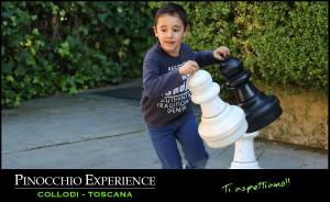 pinocchio-experience-03