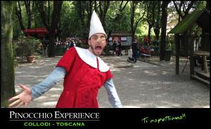 pinocchio-experience-05