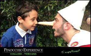 pinocchio-experience-06